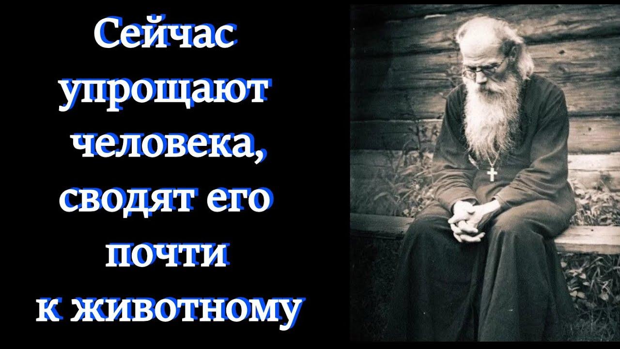 Игумен Никон Воробьёв.Все люди- падшие существа, все душевно больные, хотя далеко не все это видят.