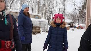 База реабилитации пострадавших животных в Кольцово
