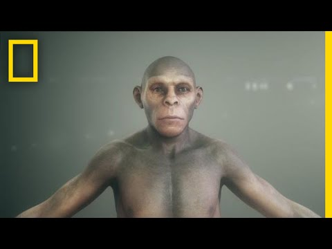 Human Origins 101 | National Geographic