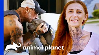 Extremely Shy Dog Finally Gets Adopted | Pit Bulls & Parolees