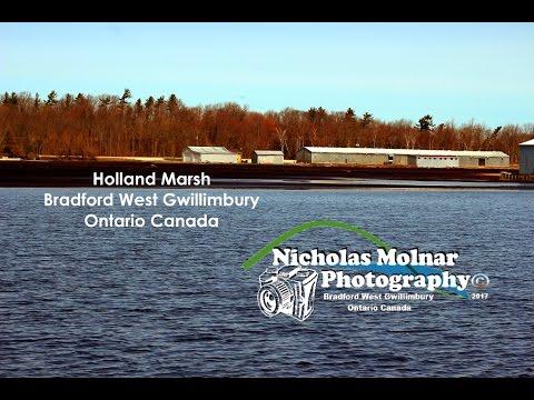 Holland Marsh Bradford Ontario Canada Under Water April 2017
