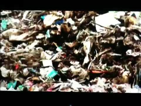 Waste in Beijing