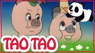 Tao Tao 20 - כלב הקטן ועצם גדול