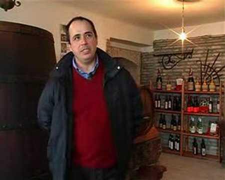 """Azienda di produzione vino """"Battistini"""""""