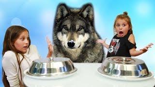 Обычная Еда против Мармелада Челлендж с Волком! МАМА ПЛАЧЕТ! Real Food vs Gummy Food