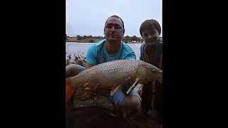 diapo de pêche a la carpe a jugon les lacs en été