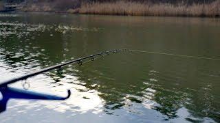 Монолог РИБАКА. Перша ФІДЕРНА рибалка 2020. Обвідний канал.
