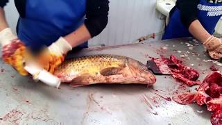 SUPER! Разделка рыбы сазана карпа по-атырауски (рынок Коктем) / Cutting Fillet Fish carp in Atyrau(, 2015-10-18T12:25:43.000Z)