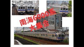 【 引退 間近 】 南海 6000系 大集合 20M 片扉 4ドア 南海電鉄 南海車両一覧