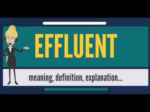 What is EFFLUENT? What does EFFLUENT mean? EFFLUENT meaning, definition, explanation & pronunciation