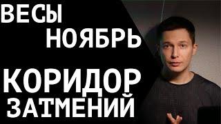Ноябрь Весы Гороскоп 2021  Время выбрать свой ...