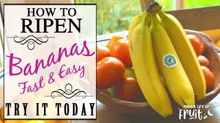 How To Ripen Bąnanas (FAST & EASY) Try It Today
