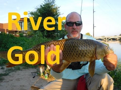 Fishing For Carp On The Dan River -  Virginia Carp Fishing