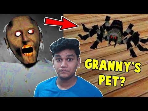 NEW GRANNY UPDATE ( New Pet , Car Escape) - Granny Horror Game (Free android Game)