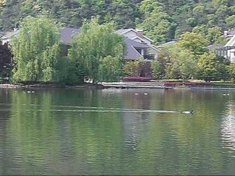 China Hangzhou - Relaxing at Sofitel Resort