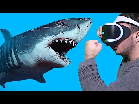 Köpek Balığı Saldırısı - Sanal Gerçeklik