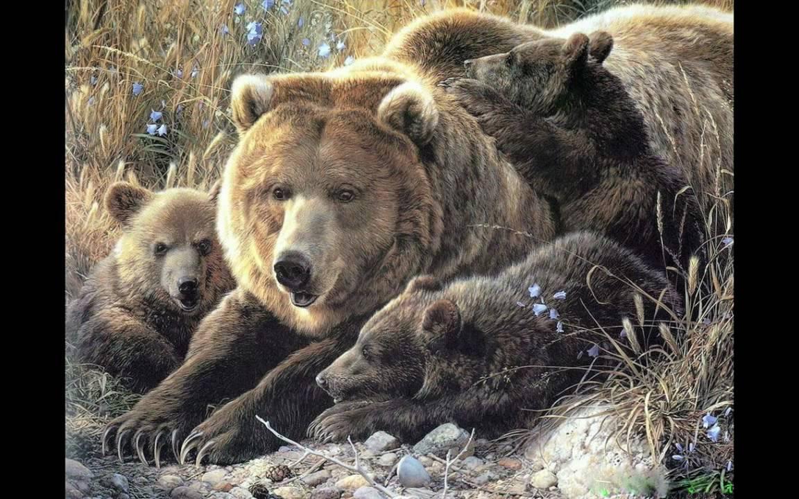 animals west wild legend ehda
