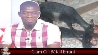 Petit Dej (09 oct. 2018) - Ciam Gi : Bétail Errant