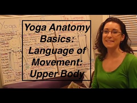 """Yoga ANATOMY Basics2""- Language of Movement: Upper Body-  LauraGyoga"