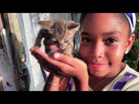 Student Impact Dominican Republic 2016