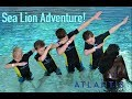 Brytons sea lion adventure! - Bryton Myler