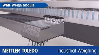 Weigh Modules with High Precision for Compliance and Increased Yields - Product Video - MT IND - en