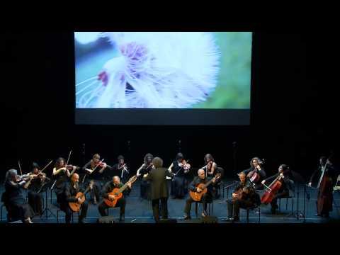 Pavane Song - Roberto Fabbri Guitar Quartet - Auditorium Parco della Musica 2014