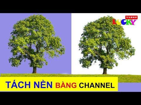 Hướng dẫn cách tách nền chi tiết bằng channel trong photoshop cc 2018