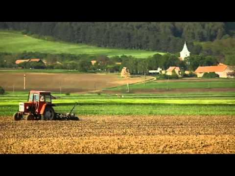 Intensive Farming - Everything Connects