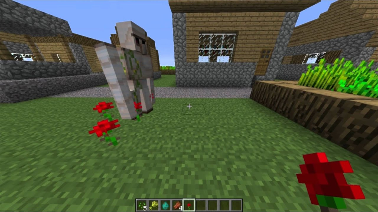 Minecraft Fun W Iron Golems Roses Amp Villagers