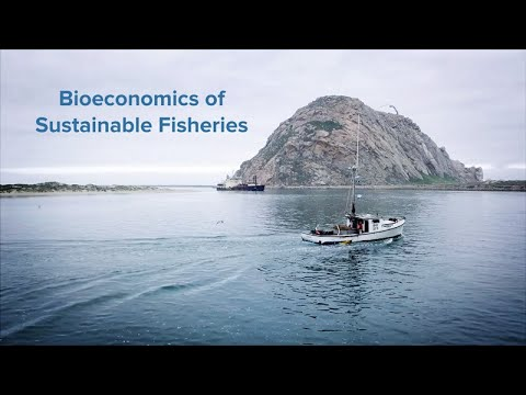 Bioeconomics Of Sustainable Fisheries