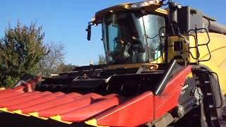 комбайн едет убирать кукурузу в Гомельской области