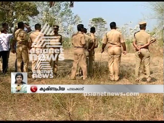 Again wild elephnat fear in Palakkad