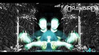 Drawbird - Deep Flight - Waxlab - 1/9/21