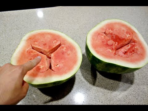 Warning - Do NOT Eat This Watermelon