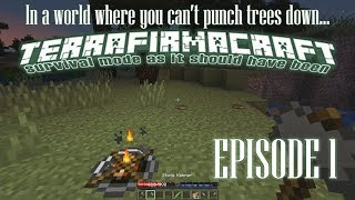 I Can't Punch Blocks Down! - Terrafirmacraft Episode 1