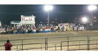 3 of a kind wild horse race...sacaton AZ fair 2020 YouTube Videos