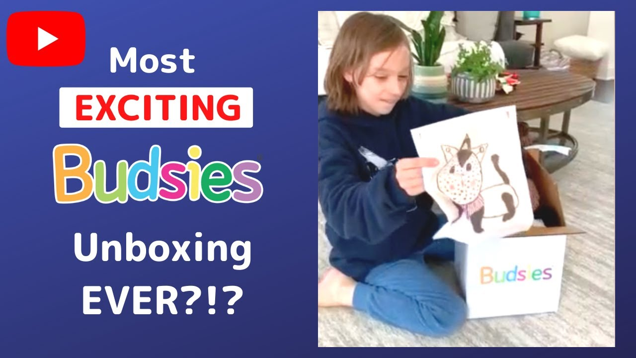 The MOST Exciting Gift Ever? | Budsies© Unboxing & Review