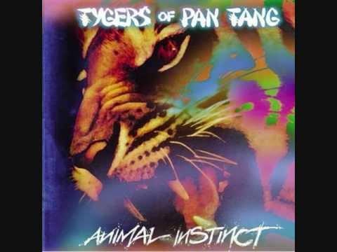 TYGERS OF PAN TANG  Rock candy
