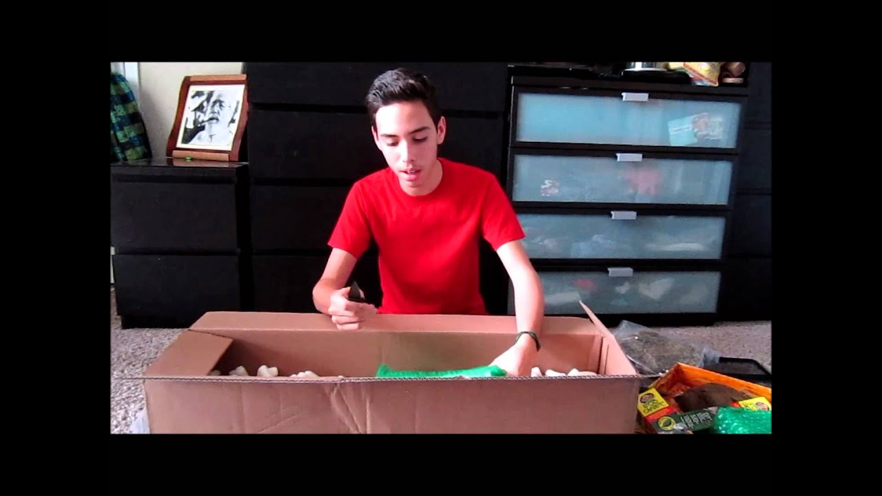 LLL Reptiles unboxing (supplies)