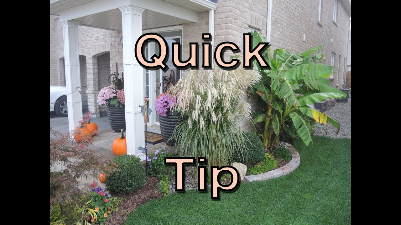 ornamental grass care  easy spring clean up, Natural flower