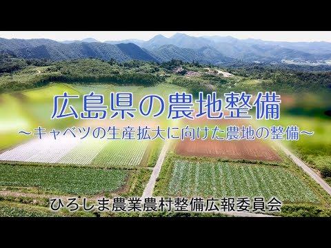 広島県の農地整備~キャベツの生産拡大に向けた農地の整備~