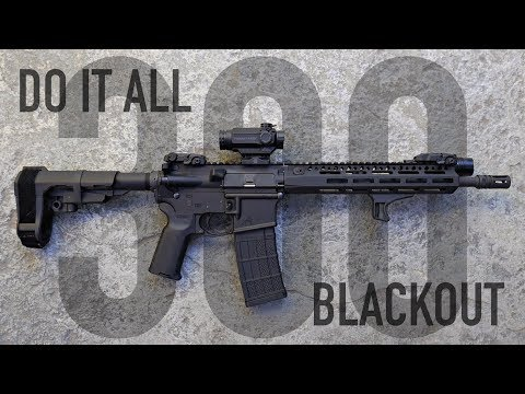 Do It All 300 Blackout AR-15 Build - Budget Conscious