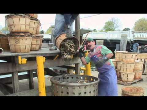 Seasonal Worker Visas Affect VA Seafood Industry