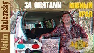 3D stereo red cyan По Южному Уралу  За опятами  2018