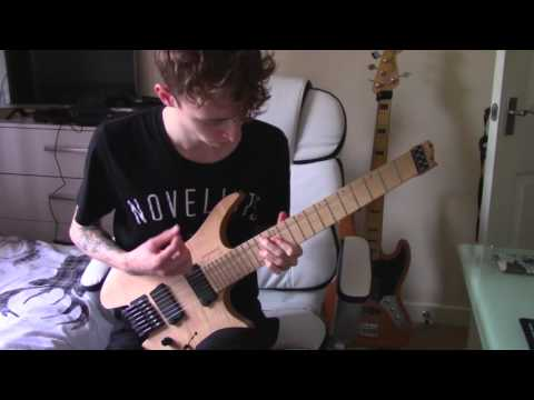 Novelists - The Lichtenberg Figure (Guitar Cover)