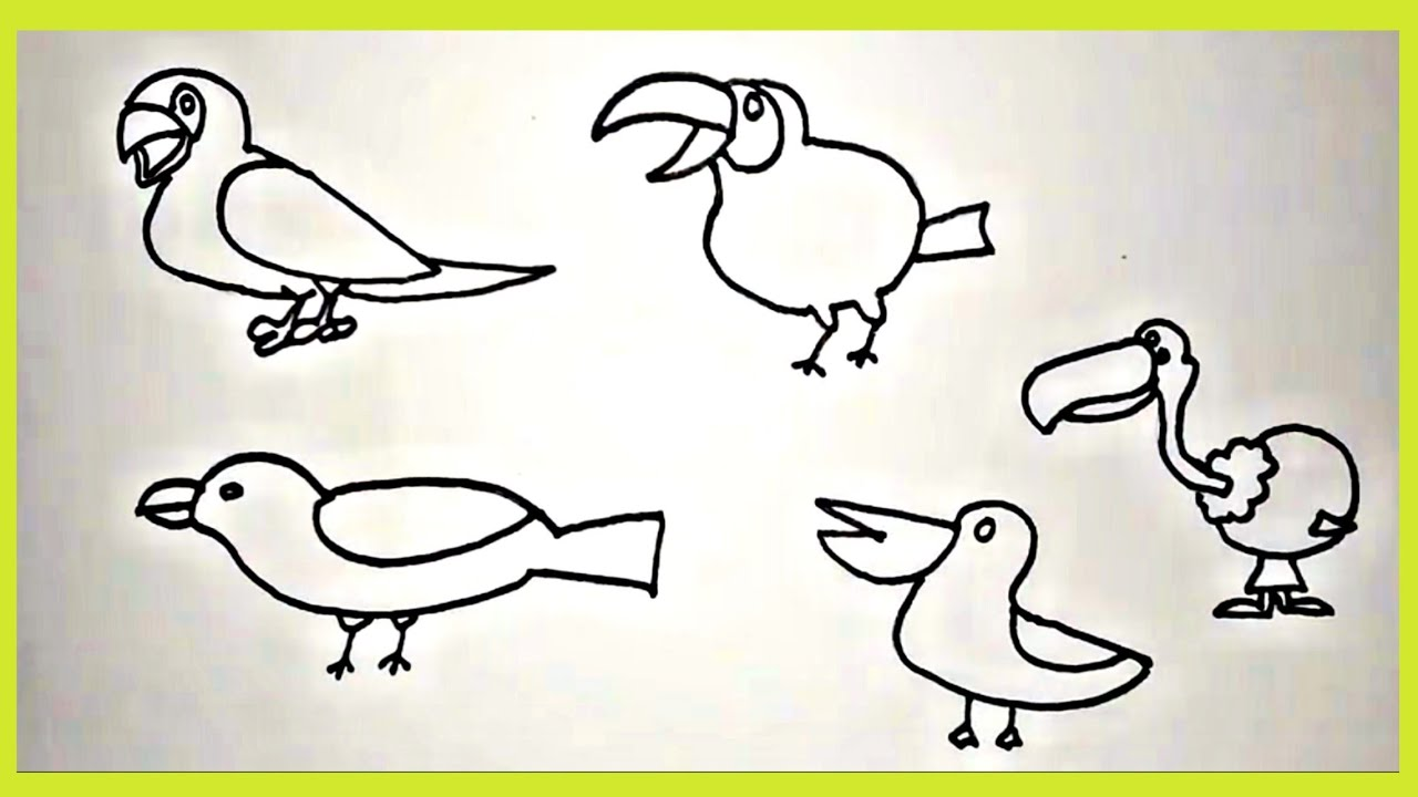 How To Draw Birds Easy Drawing For Kids Parrot Toucan Sparrow Flamingo Etc