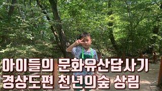 아이들의 문화유산답사기 경상도편 천년의숲 상림