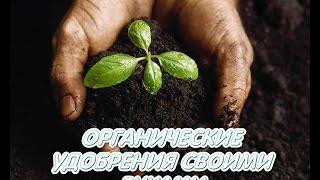 Удобрения для комнатных растений своими руками