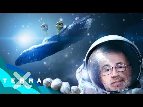 Das Alien-Raumschiff 'Oumuamua?
